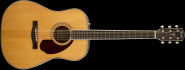 Fender Westerngitarre PM-1E Standard Paramount Dreadnought,Natural